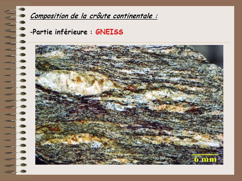Composition de la crôute continentale : -Partie inférieure : GNEISS