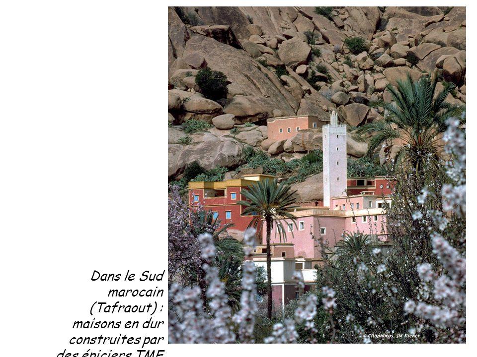 Dans le Sud marocain (Tafraout) : maisons en dur construites par des épiciers TME