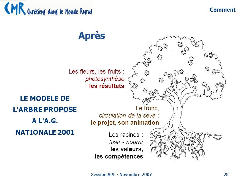 Session APF - Novembre 200728 Après LE MODELE DE L ARBRE PROPOSE A L A.G.