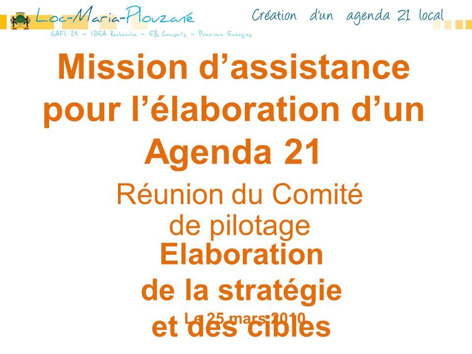 Mission dassistance pour lélaboration dun Agenda 21 Réunion du Comité de pilotage Elaboration de la stratégie et des cibles Le 25 mars 2010