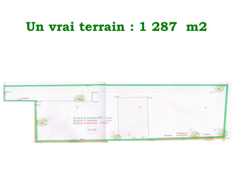 Un vrai terrain : 1 287 m2