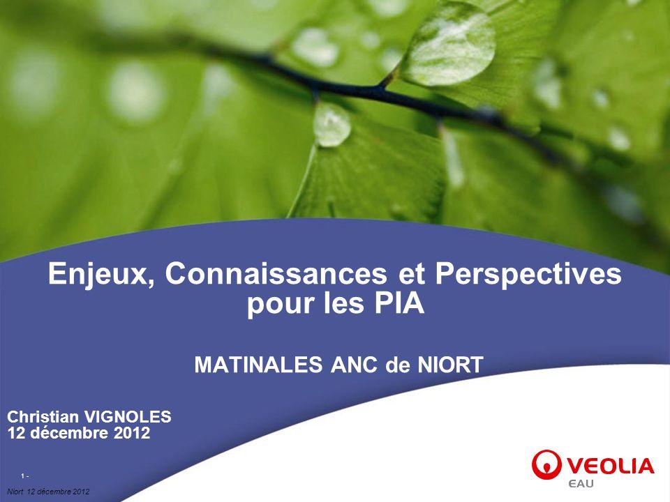 Niort 12 décembre 2012 1 - Enjeux, Connaissances et Perspectives pour les PIA MATINALES ANC de NIORT Christian VIGNOLES 12 décembre 2012