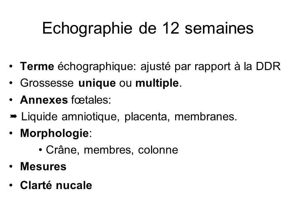 Echographie de 12 semaines Terme échographique: ajusté par rapport à la DDR Grossesse unique ou multiple. Annexes fœtales: Liquide amniotique, placent
