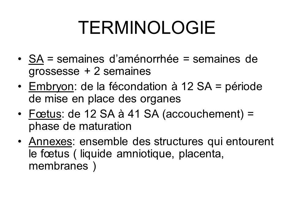 TERMINOLOGIE SA = semaines daménorrhée = semaines de grossesse + 2 semaines Embryon: de la fécondation à 12 SA = période de mise en place des organes
