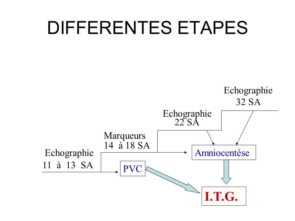 DIFFERENTES ETAPES I.T.G. Amniocentèse Marqueurs Echographie 11 à 13 SA 14 à 18 SA PVC Echographie 22 SA Echographie 32 SA