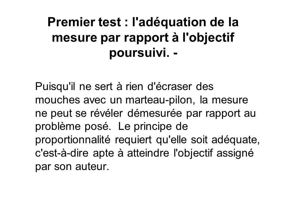 Premier test : l'adéquation de la mesure par rapport à l'objectif poursuivi. - Puisqu'il ne sert à rien d'écraser des mouches avec un marteau-pilon, l