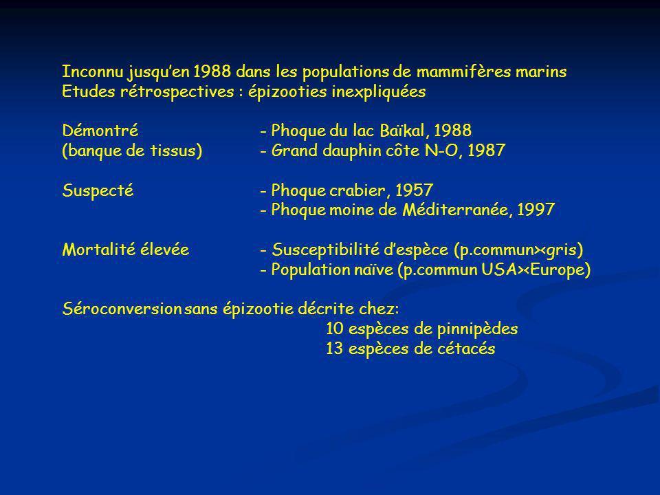 Inconnu jusquen 1988 dans les populations de mammifères marins Etudes rétrospectives : épizooties inexpliquées Démontré- Phoque du lac Baïkal, 1988 (banque de tissus)- Grand dauphin côte N-O, 1987 Suspecté- Phoque crabier, 1957 - Phoque moine de Méditerranée, 1997 Mortalité élevée - Susceptibilité despèce (p.commun><gris) - Population naïve (p.commun USA><Europe) Séroconversion sans épizootie décrite chez: 10 espèces de pinnipèdes 13 espèces de cétacés