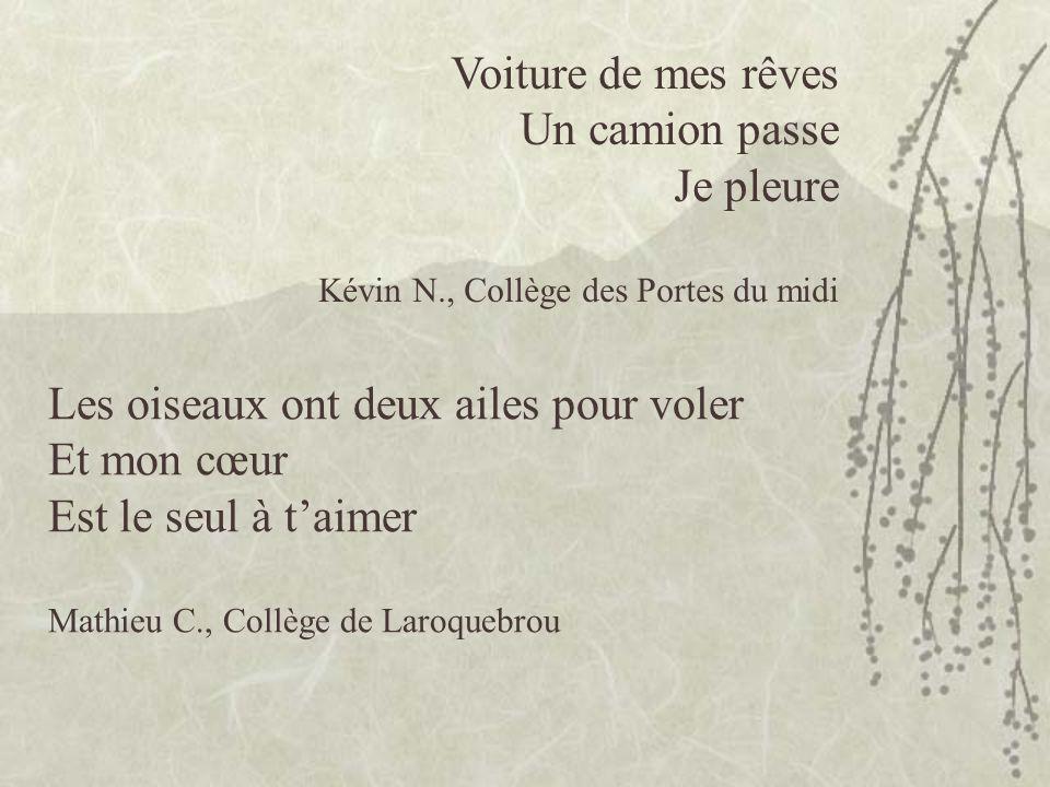 homme seul au parc larmes qui coulent je suis étonnée soleil ardent la feuille tombe tristesse Anrifia A., Lycée de la Haute-Auvergne