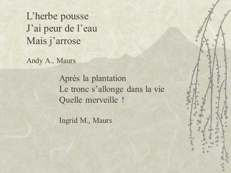 Lherbe pousse Jai peur de leau Mais jarrose Andy A., Maurs Après la plantation Le tronc sallonge dans la vie Quelle merveille .