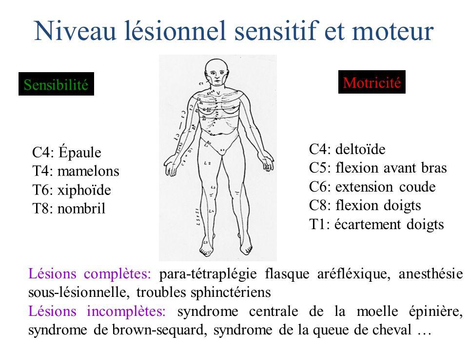 Niveau lésionnel sensitif et moteur C4: Épaule T4: mamelons T6: xiphoïde T8: nombril C4: deltoïde C5: flexion avant bras C6: extension coude C8: flexi