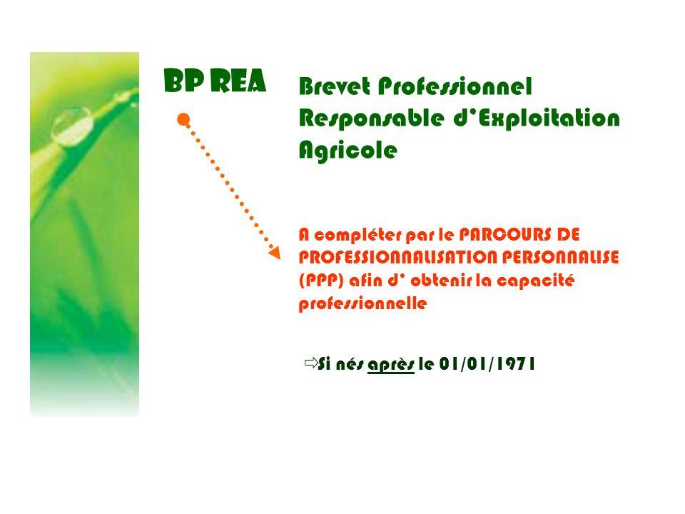 BP REA Brevet Professionnel Responsable dExploitation Agricole Si nés après le 01/01/1971 A compléter par le PARCOURS DE PROFESSIONNALISATION PERSONNA