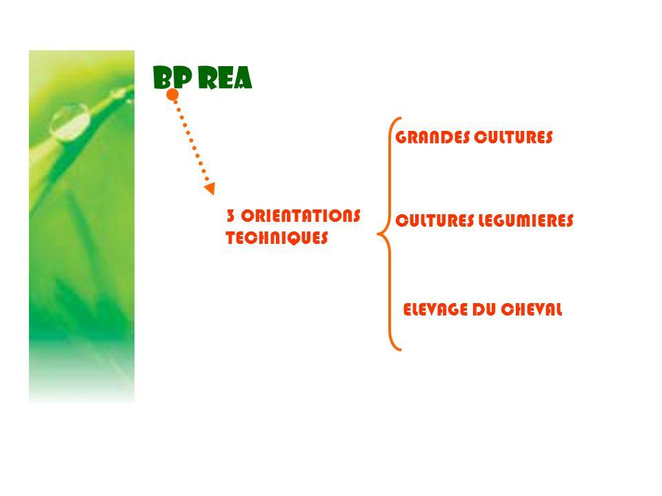 BP REA 1 200 heures en centre A compléter par un stage pratique de 6 semaines sur une exploitation agricole (200 heures) dont des journées de séquences sur une exploitation agricole (87 h)