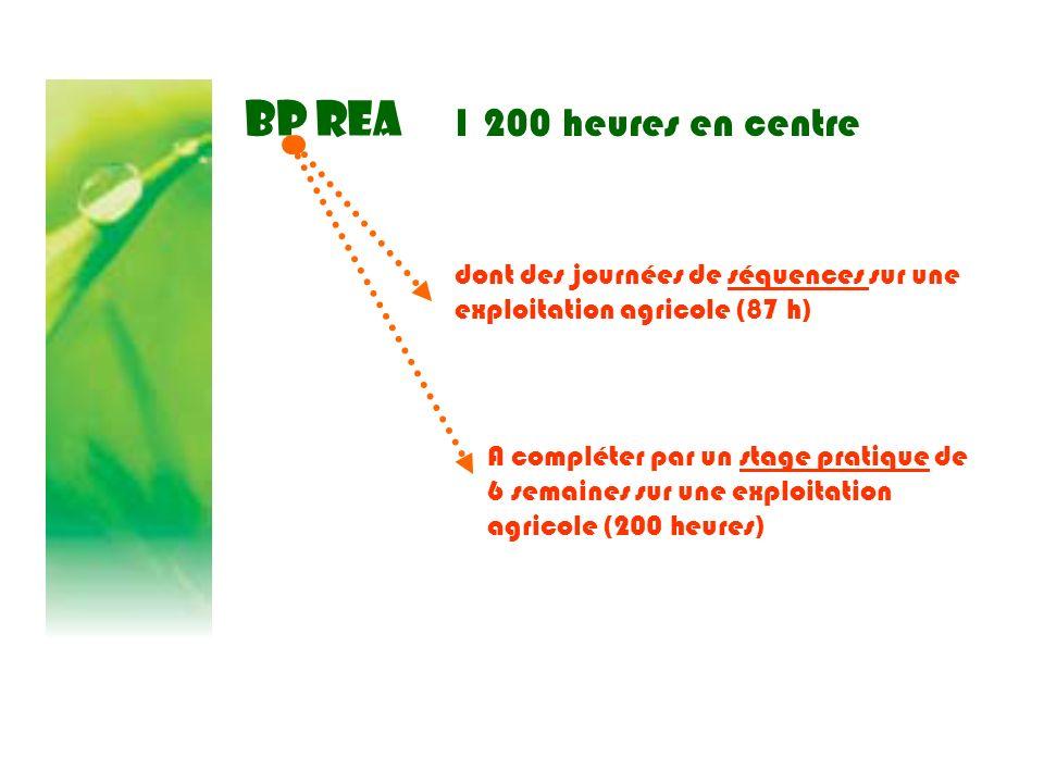 BP REA 1 200 heures en centre A compléter par un stage pratique de 6 semaines sur une exploitation agricole (200 heures) dont des journées de séquence