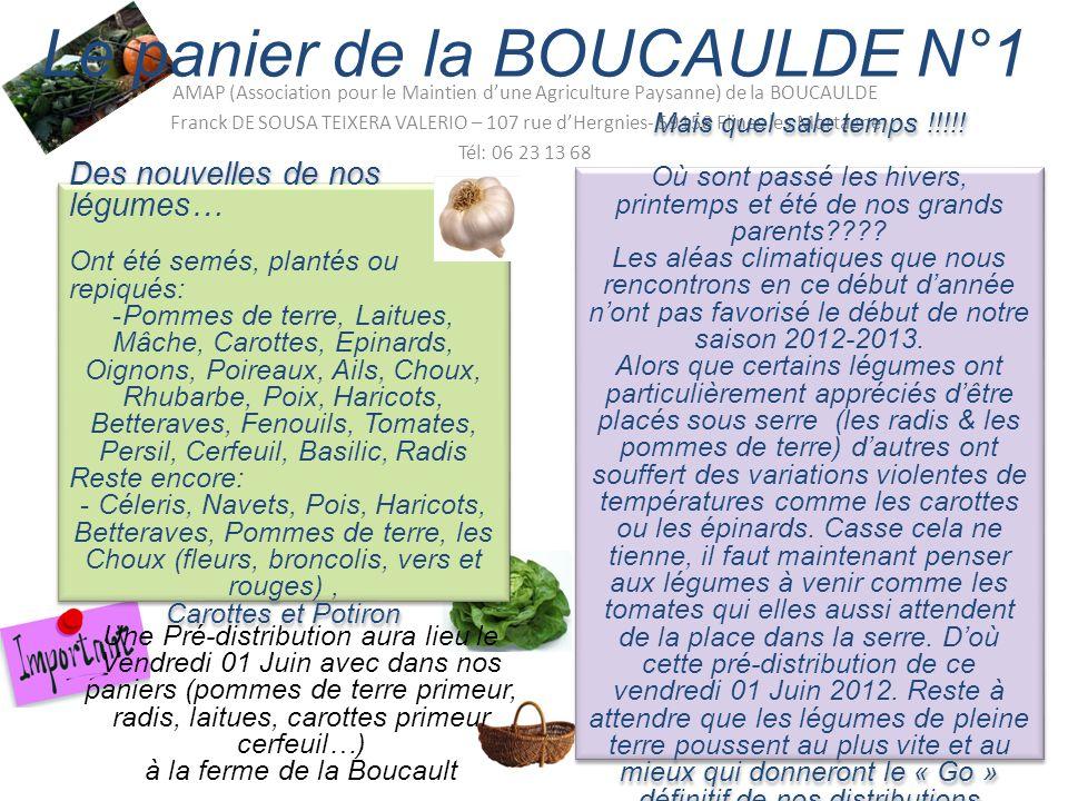 Une Pré-distribution aura lieu le Vendredi 01 Juin avec dans nos paniers (pommes de terre primeur, radis, laitues, carottes primeur cerfeuil…) à la ferme de la Boucault Le panier de la BOUCAULDE N°1 AMAP (Association pour le Maintien dune Agriculture Paysanne) de la BOUCAULDE Franck DE SOUSA TEIXERA VALERIO – 107 rue dHergnies- 59158 Flines les Mortagne Tél: 06 23 13 68 Des nouvelles de nos légumes… Ont été semés, plantés ou repiqués: -Pommes de terre, Laitues, Mâche, Carottes, Epinards, Oignons, Poireaux, Ails, Choux, Rhubarbe, Poix, Haricots, Betteraves, Fenouils, Tomates, Persil, Cerfeuil, Basilic, Radis Reste encore: - Céleris, Navets, Pois, Haricots, Betteraves, Pommes de terre, les Choux (fleurs, broncolis, vers et rouges), Carottes et Potiron Des nouvelles de nos légumes… Ont été semés, plantés ou repiqués: -Pommes de terre, Laitues, Mâche, Carottes, Epinards, Oignons, Poireaux, Ails, Choux, Rhubarbe, Poix, Haricots, Betteraves, Fenouils, Tomates, Persil, Cerfeuil, Basilic, Radis Reste encore: - Céleris, Navets, Pois, Haricots, Betteraves, Pommes de terre, les Choux (fleurs, broncolis, vers et rouges), Carottes et Potiron Mais quel sale temps !!!!.