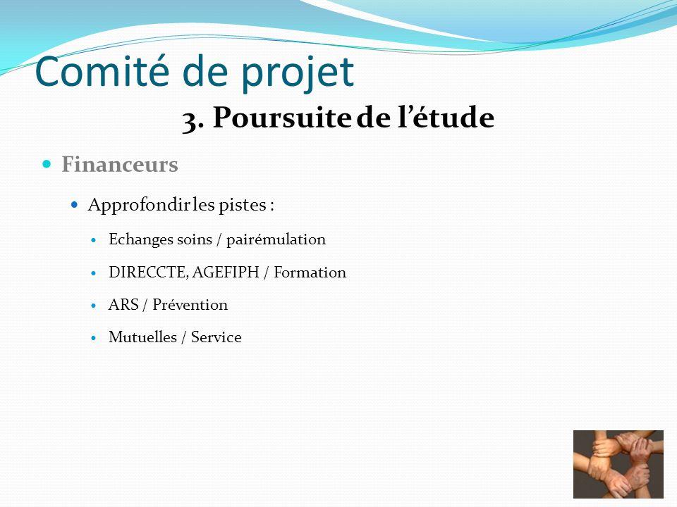 Comité de projet 3. Poursuite de létude Financeurs Approfondir les pistes : Echanges soins / pairémulation DIRECCTE, AGEFIPH / Formation ARS / Prévent