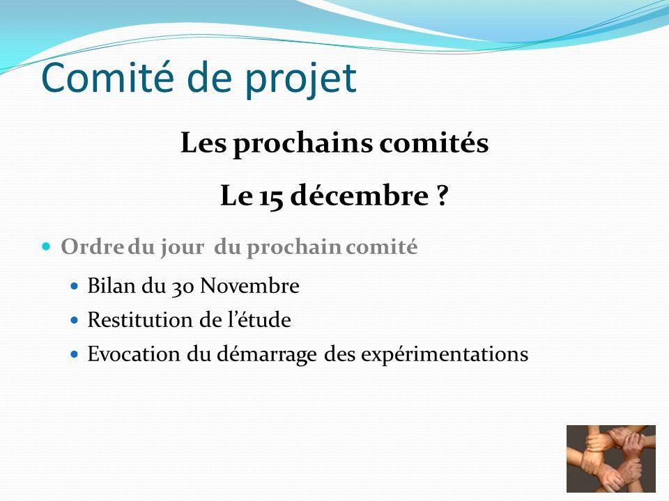 Comité de projet Les prochains comités Le 15 décembre ? Ordre du jour du prochain comité Bilan du 30 Novembre Restitution de létude Evocation du démar