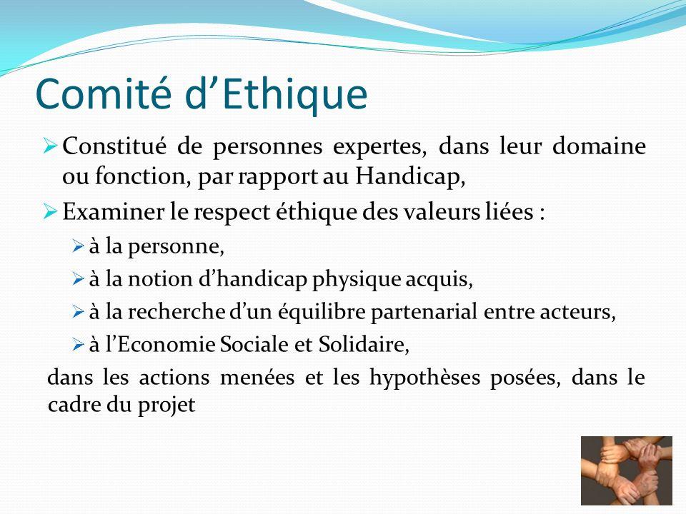 Comité dEthique Constitué de personnes expertes, dans leur domaine ou fonction, par rapport au Handicap, Examiner le respect éthique des valeurs liées