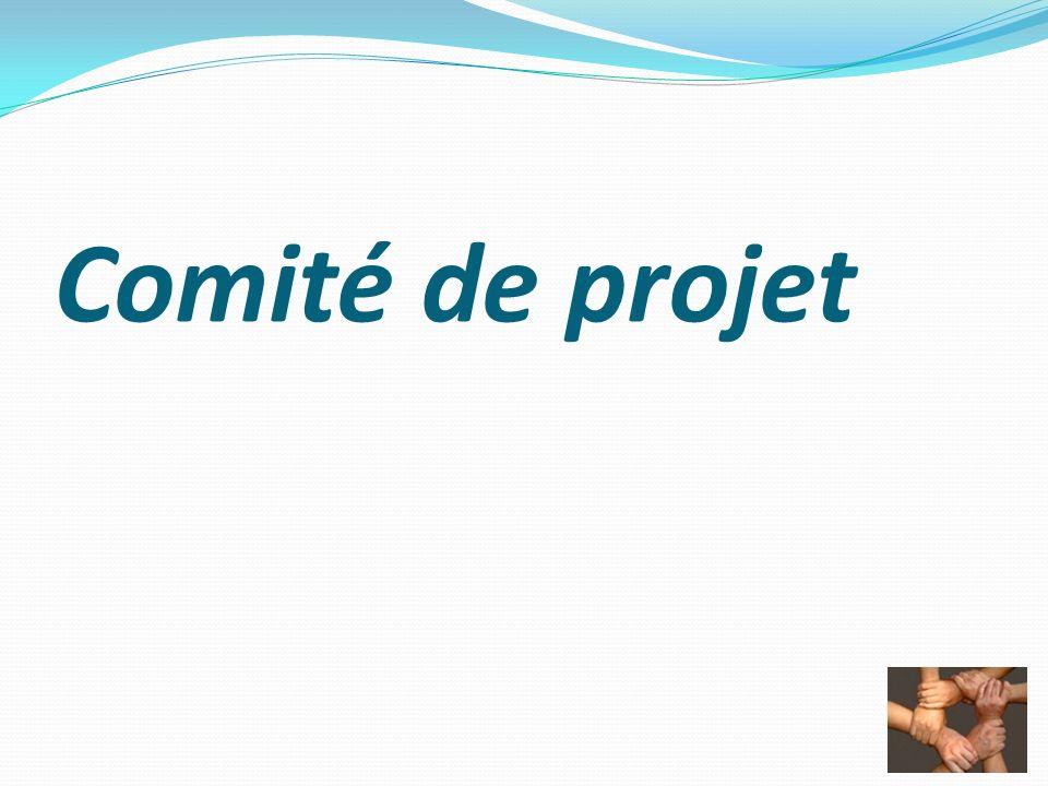 Comité de projet