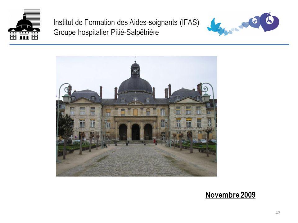 FIN Novembre 2009 Institut de Formation des Aides-soignants (IFAS) Groupe hospitalier Pitié-Salpêtrière 42