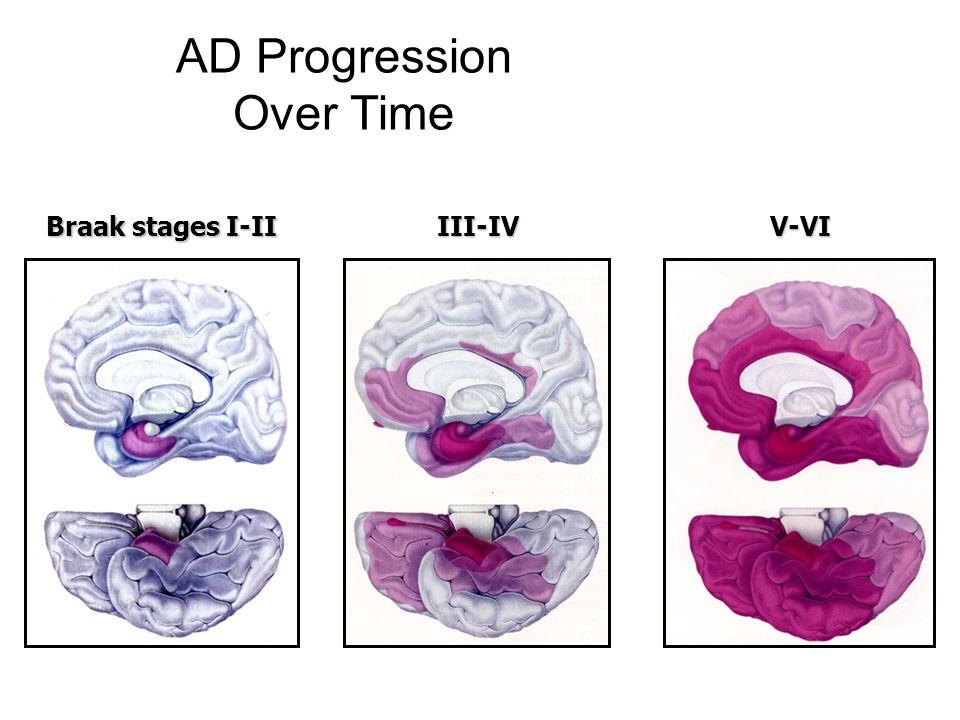 AD Progression Over Time Braak stages I-II III-IVV-VI