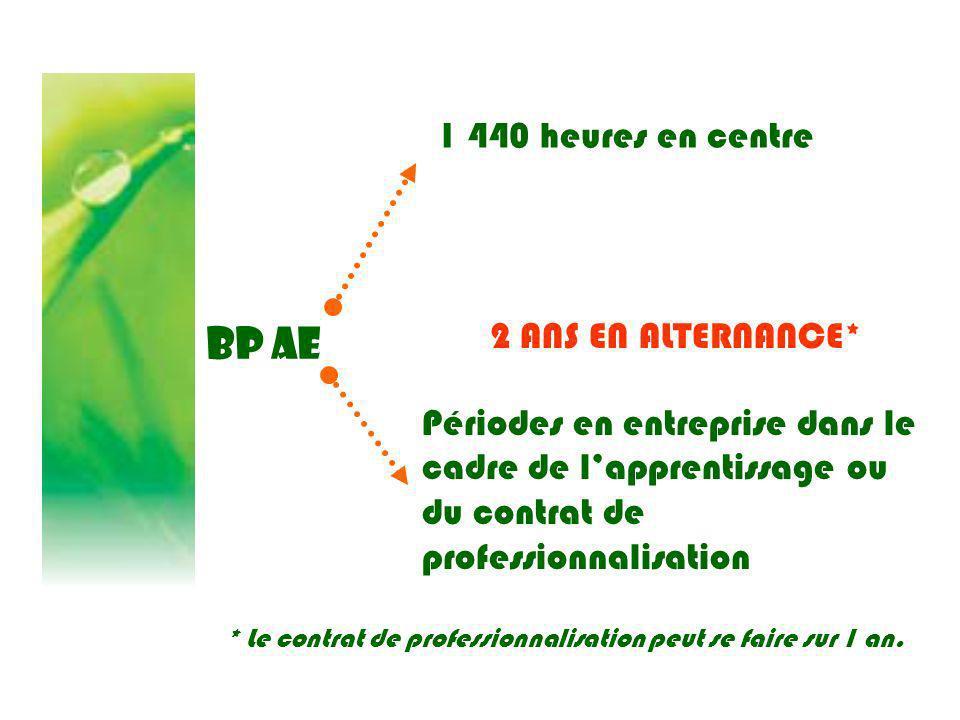 BP AE 1 440 heures en centre Périodes en entreprise dans le cadre de lapprentissage ou du contrat de professionnalisation 2 ANS EN ALTERNANCE* * Le co