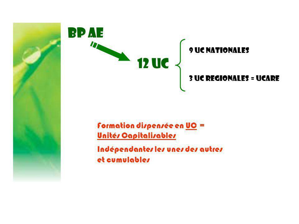 BP AE Formation dispensée en UC = Unités Capitalisables Indépendantes les unes des autres et cumulables 12 UC 9 UC NATIONALES 3 UC REGIONALES = UCARE