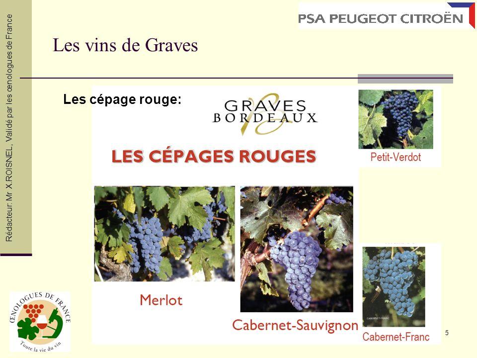 6 Merlot : Originaire de la région Bordelaise, le Merlot fait partie de l encépagement rouge de la plupart des Vins de Bordeaux.
