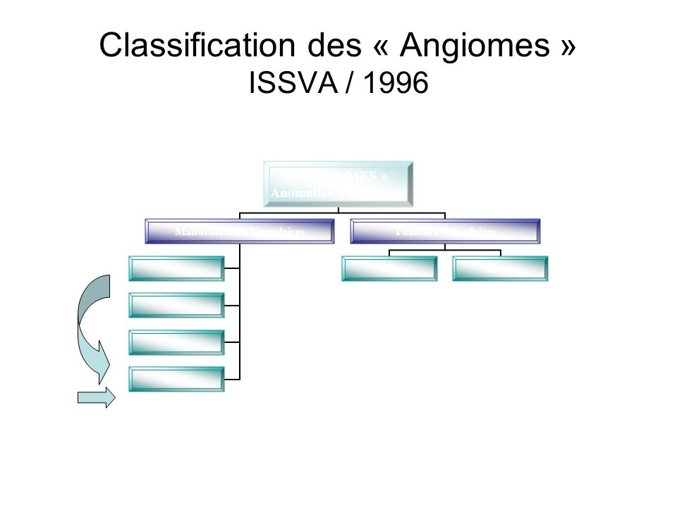 Classification des « Angiomes » ISSVA / 1996 « ANGIOMES » Anomalies Vasculaires Malformations Vasculaires C V L MAV Tumeurs Vasculaires HAutres Flux l