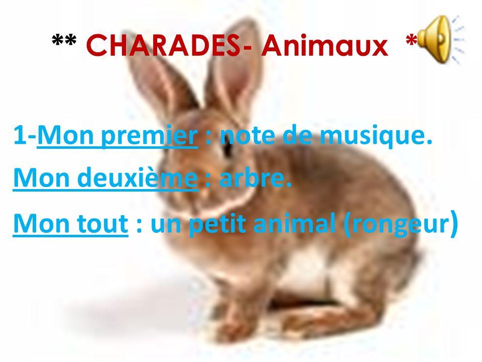 ** CHARADES- Animaux ** 1-Mon premier : note de musique.