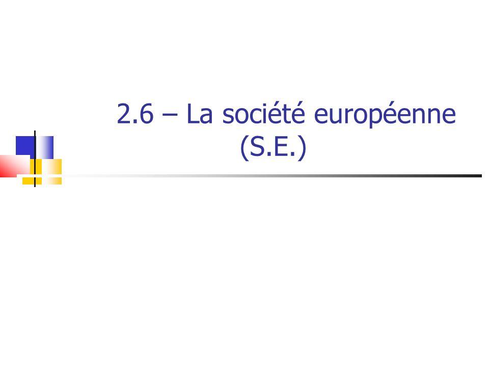 2.6 – La société européenne (S.E.)