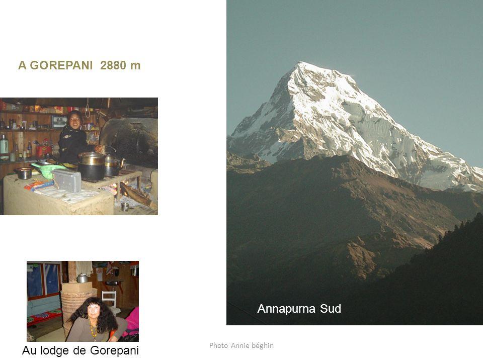 Photo Annie béghin Au lodge de Gorepani Annapurna Sud de Gorepani A GOREPANI 2880 m Annapurna Sud