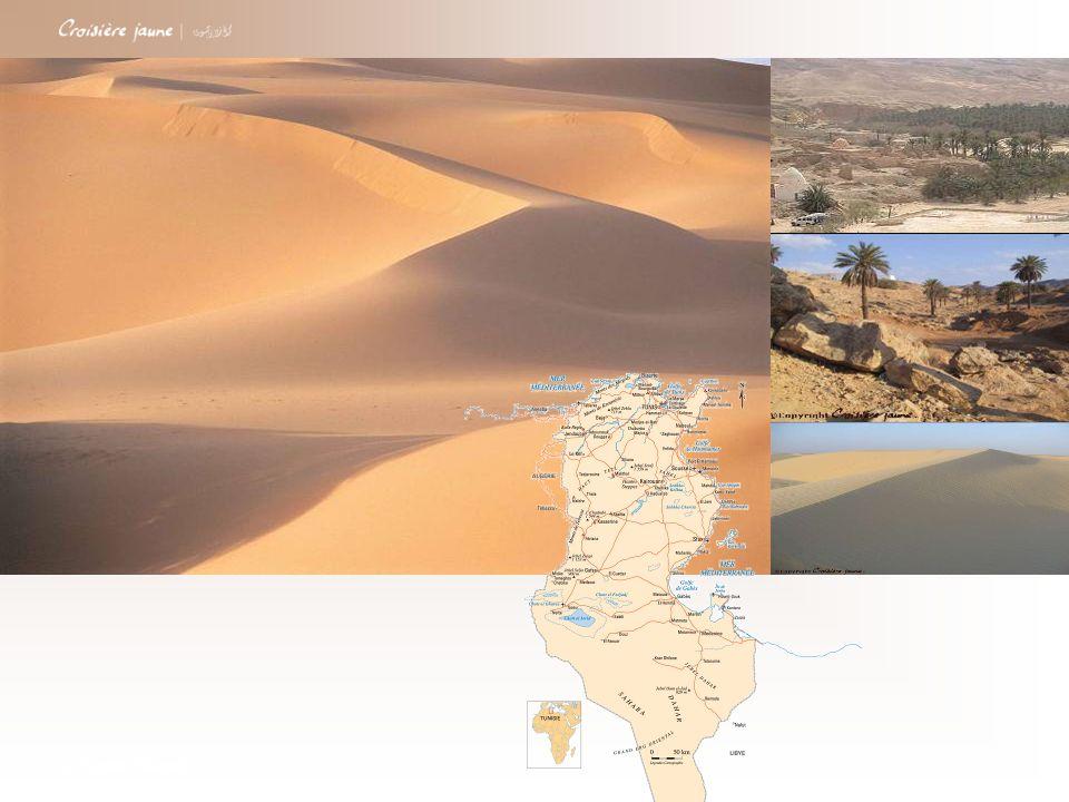 Pour ce Rallye vous serez muni dun Road Book et dun GPS par équipe Jour 3 Découvrez le sud Tunisien en 4X4 à travers un Rallye Road Book avec GPS dans les Dunes