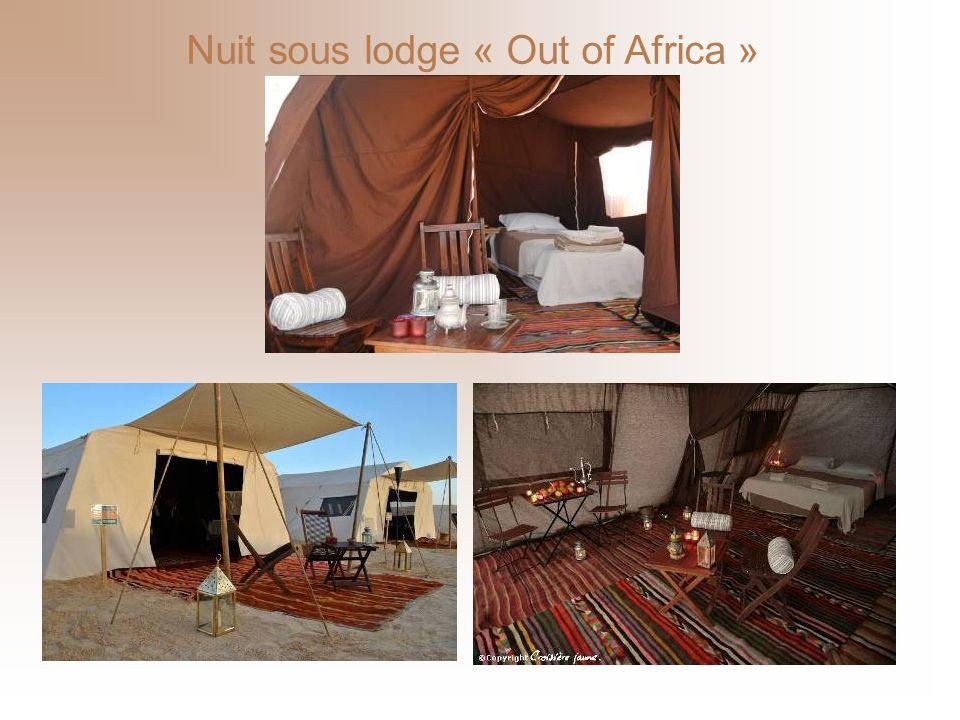 Transfert de laéroport de Tozeur en quad jusquà votre campement éphémère dans la région dEl Faouar