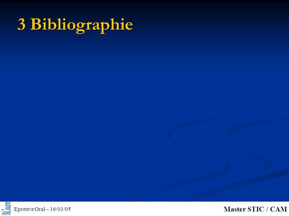 Epreuve Oral – 16/03/05 Master STIC / CAM 3 Bibliographie