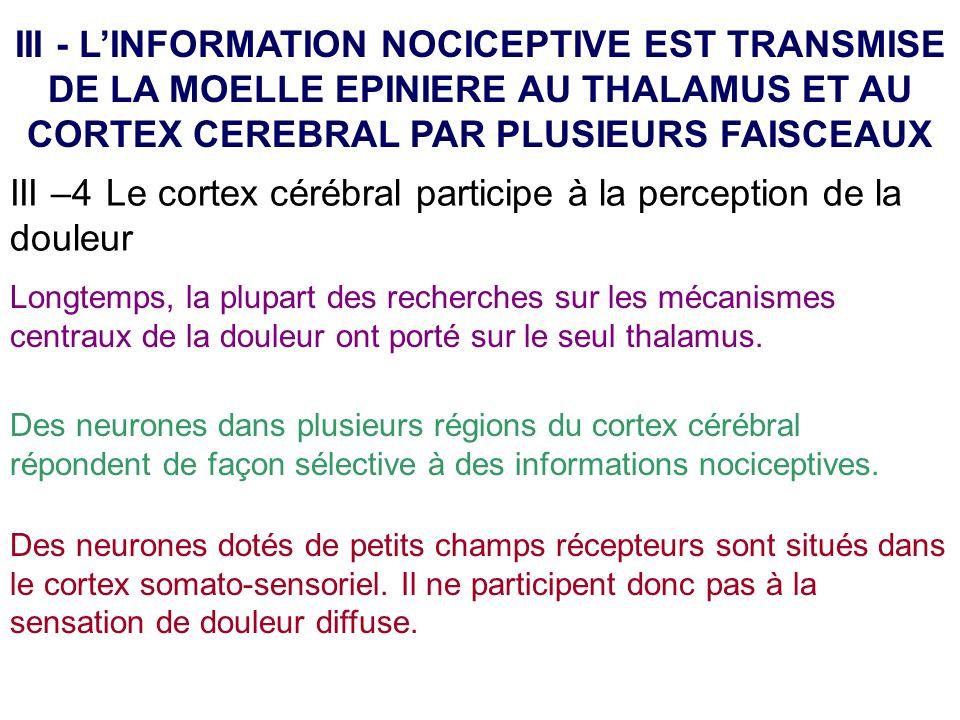III –4 Le cortex cérébral participe à la perception de la douleur III - LINFORMATION NOCICEPTIVE EST TRANSMISE DE LA MOELLE EPINIERE AU THALAMUS ET AU
