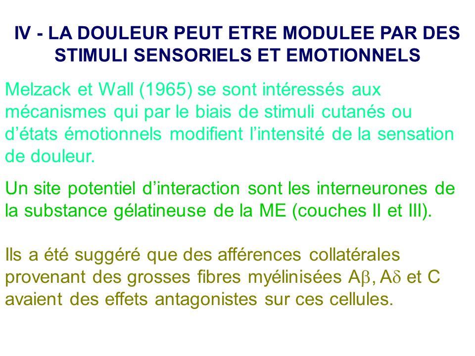 Melzack et Wall (1965) se sont intéressés aux mécanismes qui par le biais de stimuli cutanés ou détats émotionnels modifient lintensité de la sensatio