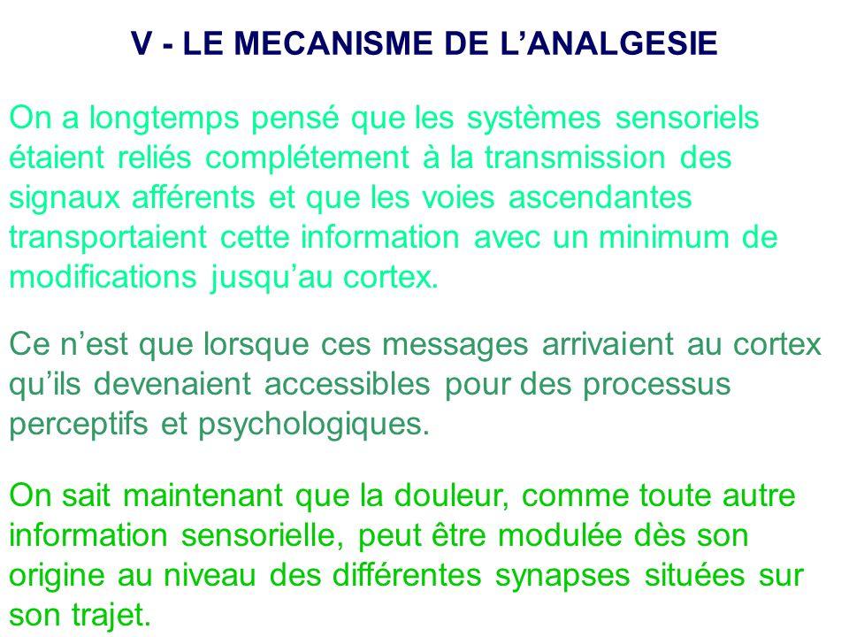 On a longtemps pensé que les systèmes sensoriels étaient reliés complétement à la transmission des signaux afférents et que les voies ascendantes tran