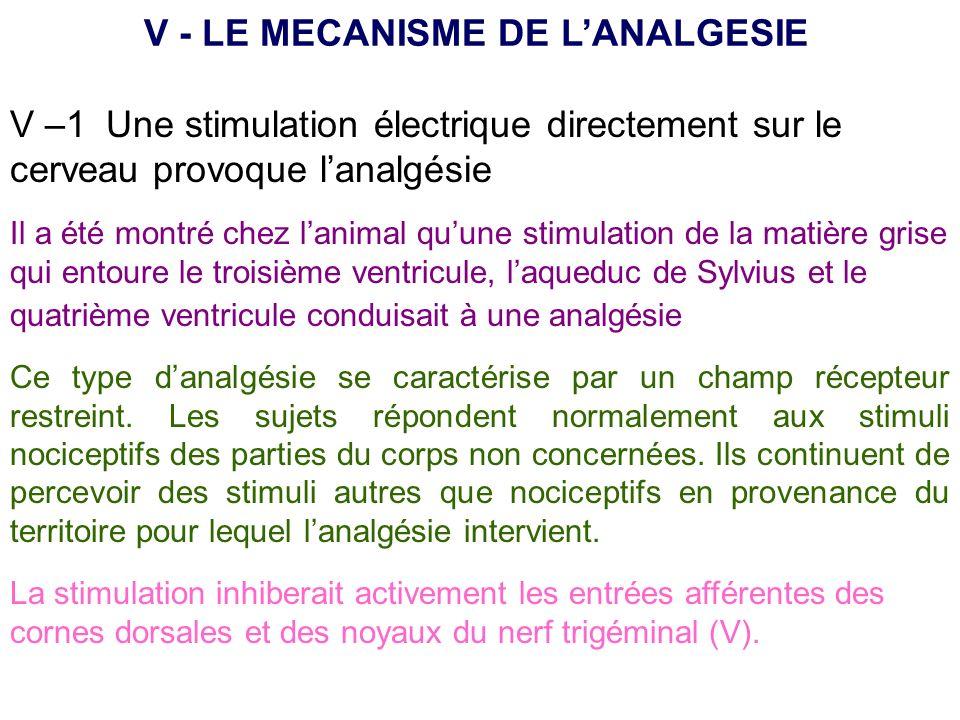V –1 Une stimulation électrique directement sur le cerveau provoque lanalgésie V - LE MECANISME DE LANALGESIE Il a été montré chez lanimal quune stimu