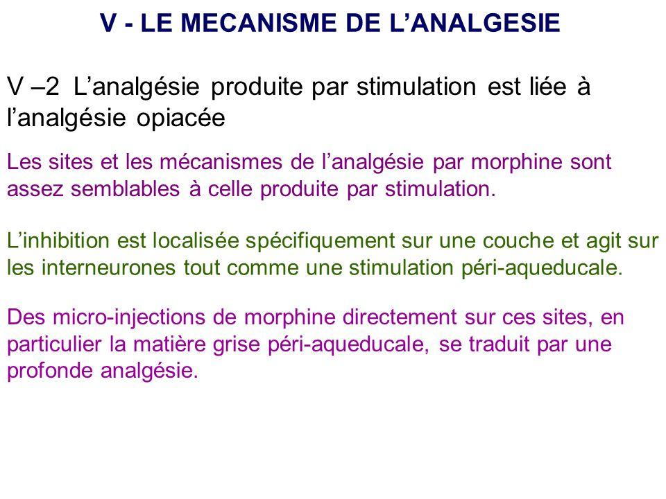 V –2 Lanalgésie produite par stimulation est liée à lanalgésie opiacée V - LE MECANISME DE LANALGESIE Les sites et les mécanismes de lanalgésie par mo