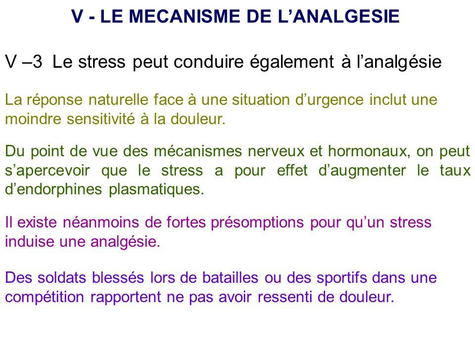 V –3 Le stress peut conduire également à lanalgésie V - LE MECANISME DE LANALGESIE La réponse naturelle face à une situation durgence inclut une moind