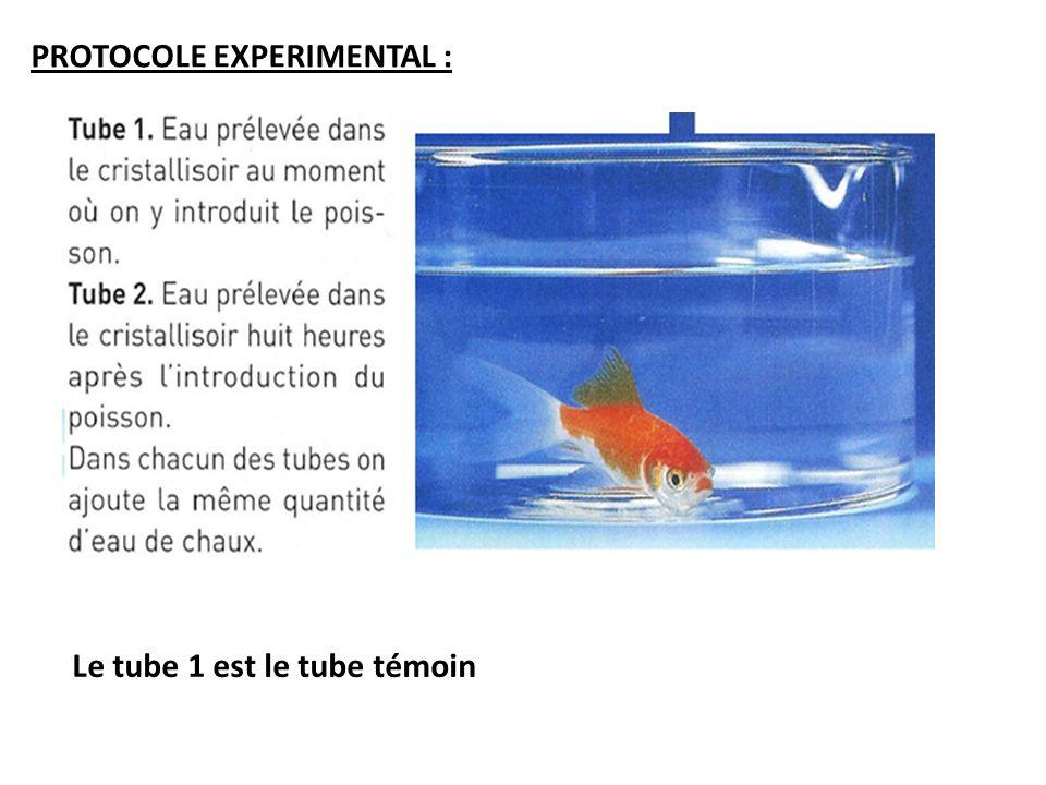 PROTOCOLE EXPERIMENTAL : Le tube 1 est le tube témoin