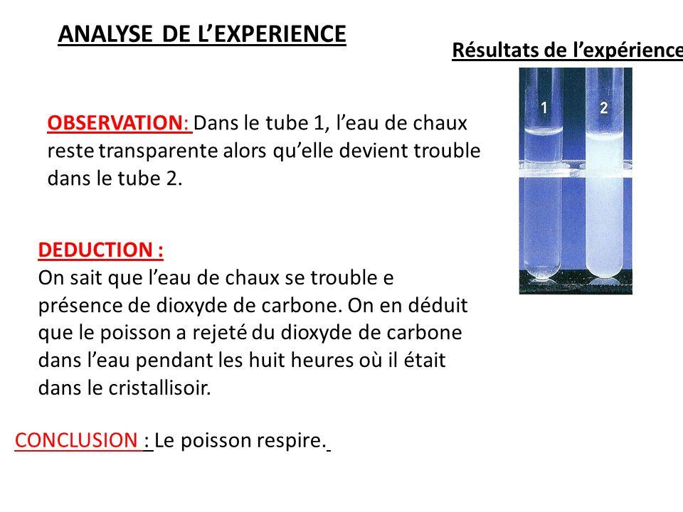 Résultats de lexpérience: OBSERVATION: Dans le tube 1, leau de chaux reste transparente alors quelle devient trouble dans le tube 2. DEDUCTION : On sa