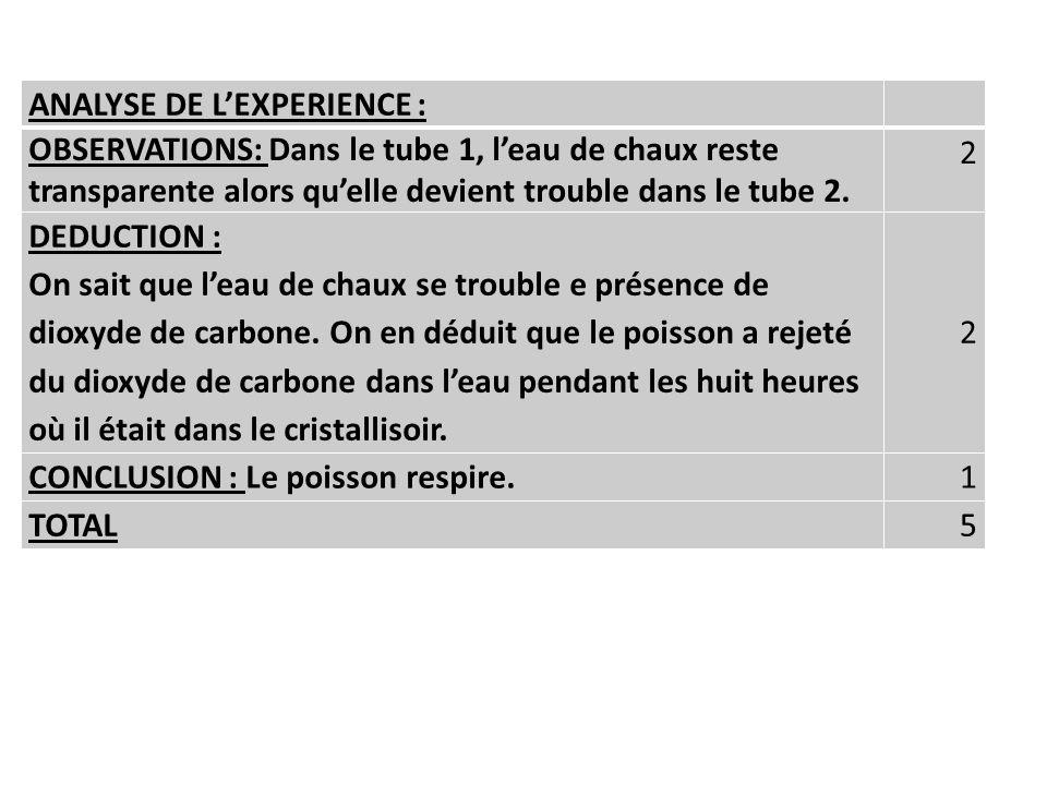 ANALYSE DE LEXPERIENCE : OBSERVATIONS: Dans le tube 1, leau de chaux reste transparente alors quelle devient trouble dans le tube 2. 2 DEDUCTION : On