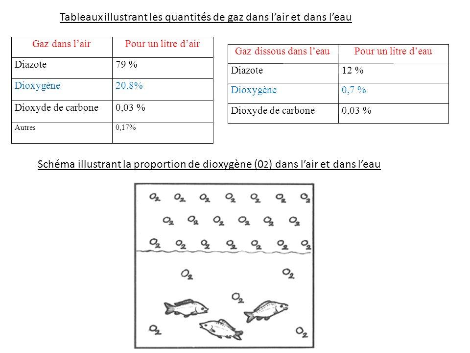 Gaz dans lairPour un litre dair Diazote79 % Dioxygène20,8% Dioxyde de carbone0,03 % Autres0,17% Gaz dissous dans leauPour un litre deau Diazote12 % Di