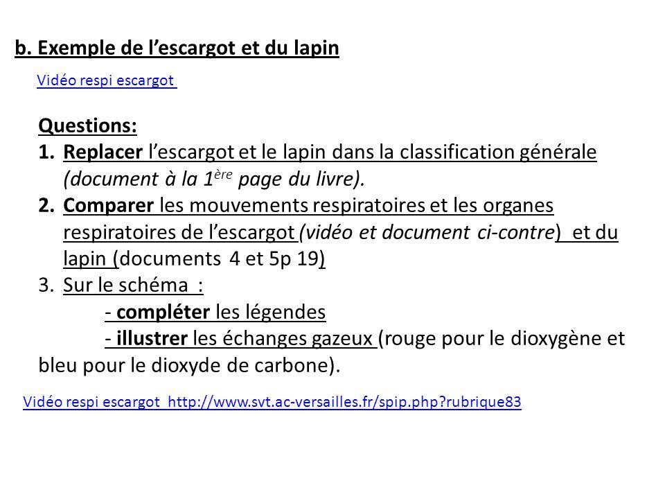 Vidéo respi escargot http://www.svt.ac-versailles.fr/spip.php?rubrique83 Questions: 1.Replacer lescargot et le lapin dans la classification générale (
