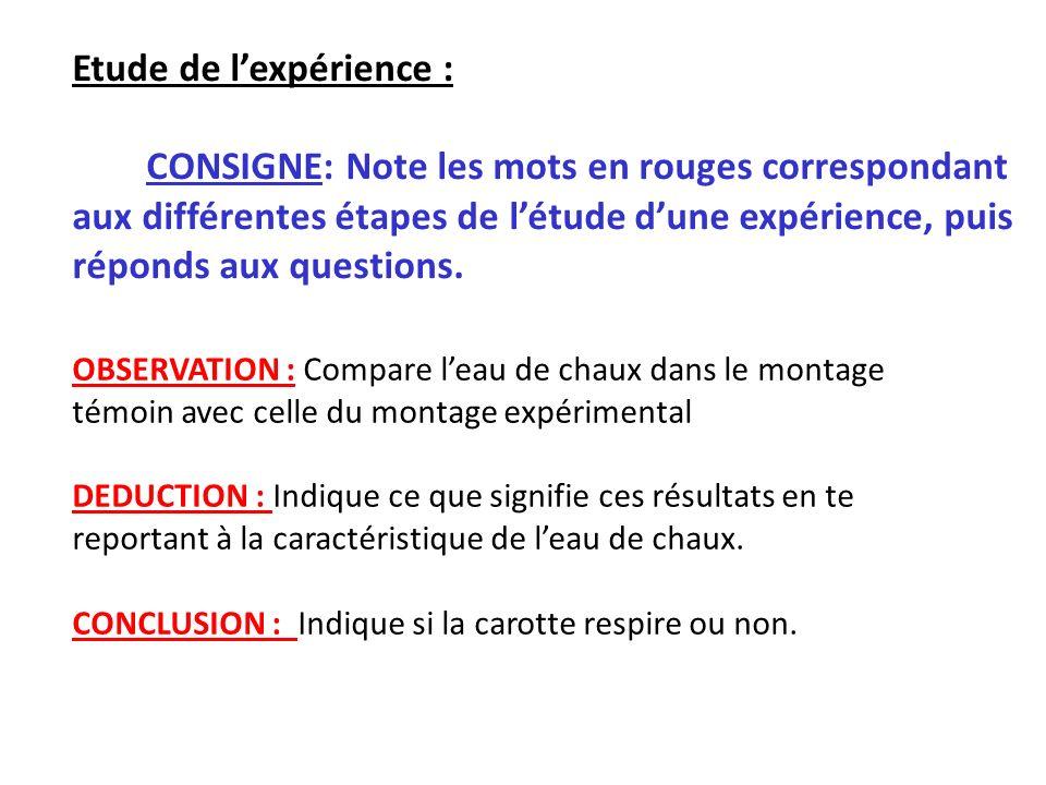 Etude de lexpérience : CONSIGNE: Note les mots en rouges correspondant aux différentes étapes de létude dune expérience, puis réponds aux questions. O