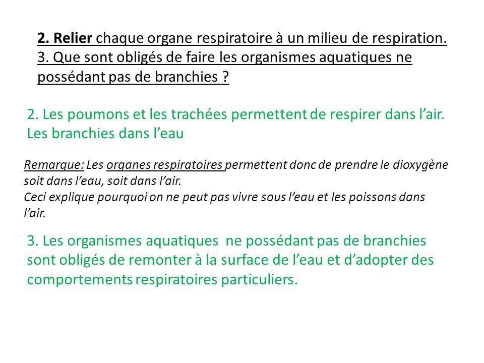 Remarque: Les organes respiratoires permettent donc de prendre le dioxygène soit dans leau, soit dans lair. Ceci explique pourquoi on ne peut pas vivr