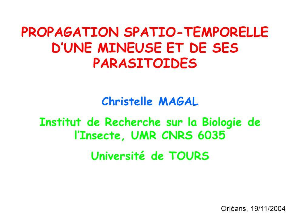 PROPAGATION SPATIO-TEMPORELLE DUNE MINEUSE ET DE SES PARASITOIDES Christelle MAGAL Institut de Recherche sur la Biologie de lInsecte, UMR CNRS 6035 Université de TOURS Orléans, 19/11/2004