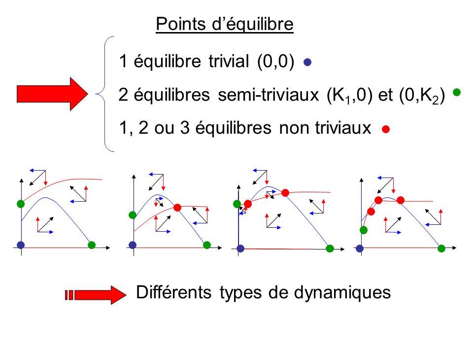 Isoclines MineusesParasitoïdes u v K 2 ( /(r 2 h)+1) K2K2 u v u v (r 1 h/4K 1 )(K 1 +1/Eh) 2 r 1 /E K 1 >1/Eh K 1 <1/Eh