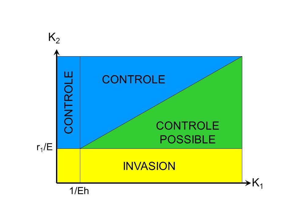 K i : capacités daccueil r i : taux de croissance E : taux de rencontre h : temps mis pour attraper 1 proie : taux de conversion